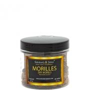 Morilles Conica extra